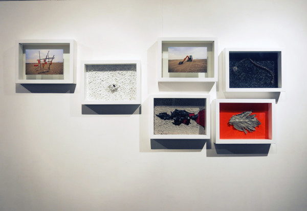 Pallavi Paul Under Controlled Circumstances Series Found plants, resin, vinyl, acrylic, latex on paper + 2 photographs Size: 11 x 16 inches each 2014