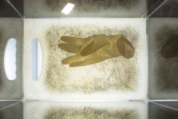 Chopped I, Chopping board, surgical gloves, led lights in acrylic box, 2016