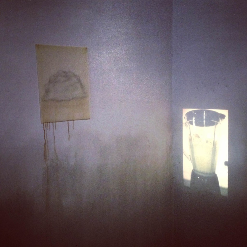 "At the Kochi-Muziris Biennale, Chris Dercon  considers artist Prajakta Potnis his ""big discovery"". ""Her work is one of the most important at this Biennale,"" he believes."