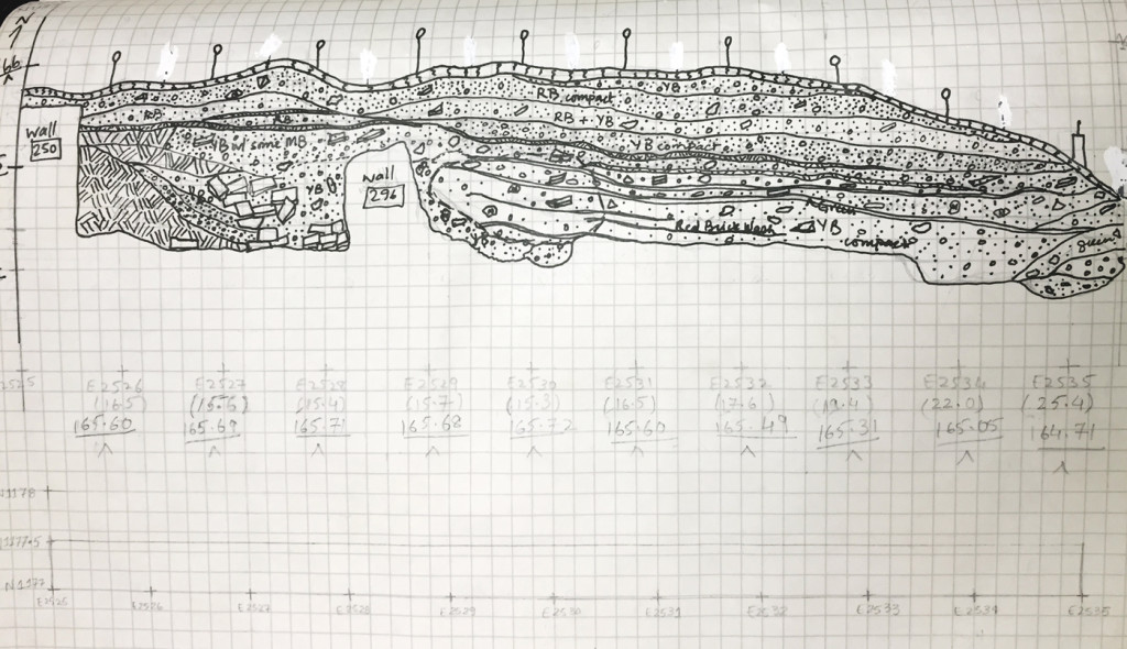 A section drawing from the author's field notebook of Trench 11, located in Harappa, Pakistan, 1997. Photo: Harappa Archaeological Research Project.