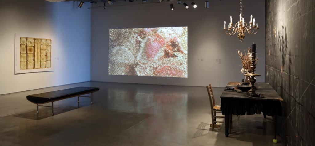 Installation image from Gut Feelings