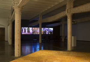 Pallavi Paul, 'Not a Simple Disappearance, but a Slow Dissolution,' Installation View